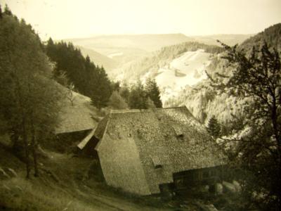 thiesenhof1
