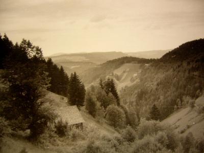 thiesenhof1963