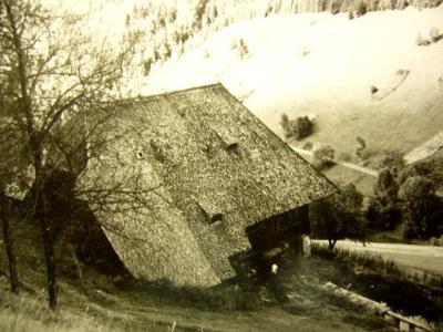 thiesenhof2